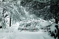 Spot a downed power line? Stay away and call for help!